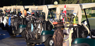 Golf Carts - Palm Aire